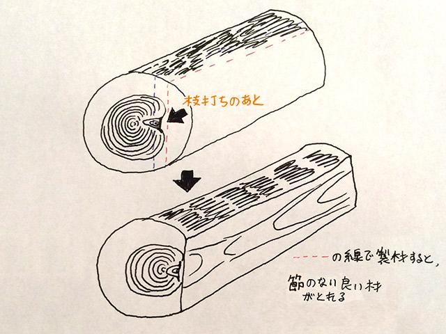 枝打ちのあとが、製材所で目印になる