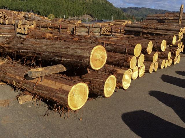 市場で陳列された四辻木材の商品