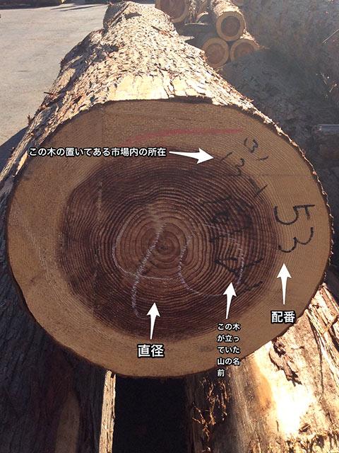 木材の競り末口に書かれた番号
