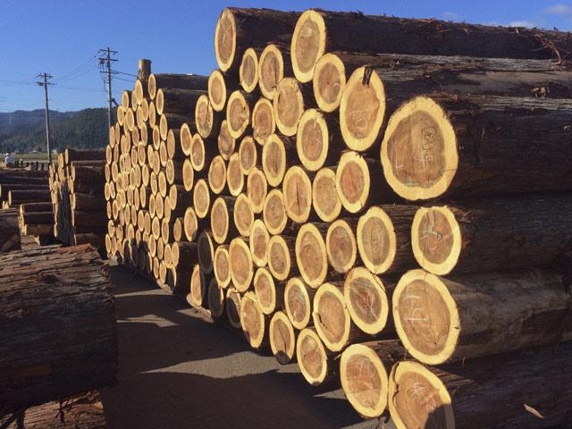 木材まつりの競りに出す商品