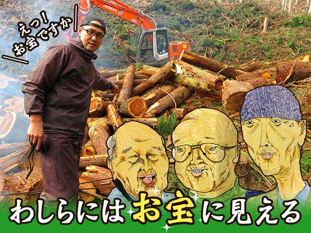 達人のアイデアにカルチャーショック!伐採後の余った木材を商品化できないか?