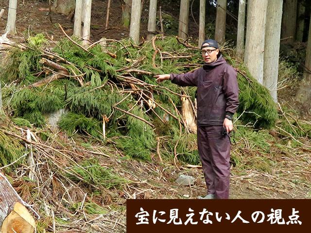 大量に残される枝葉