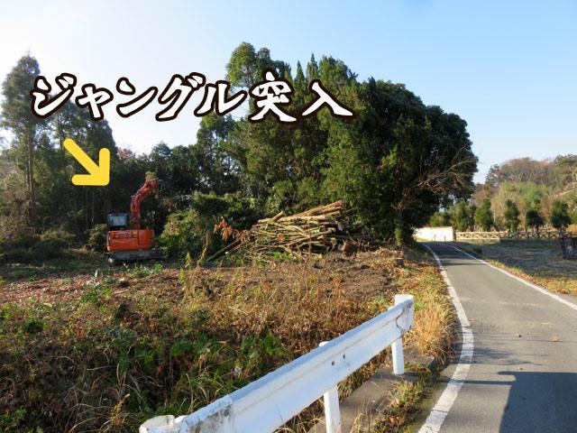 重機をいれ倒した木を細かくカット