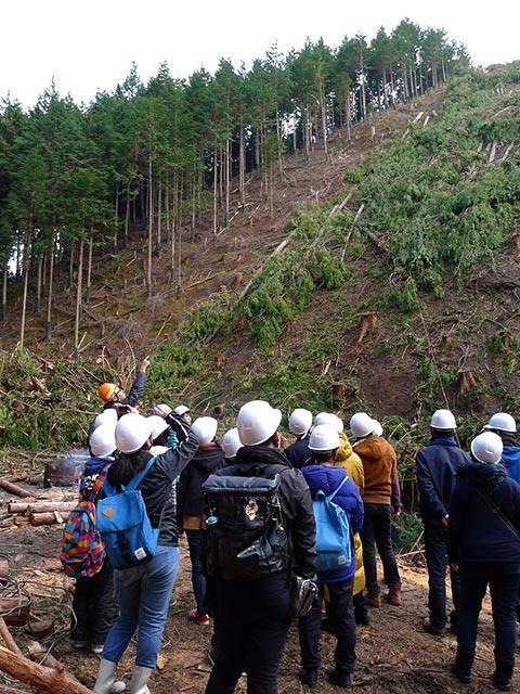 生徒さんに現場を見てもらい、皆伐施業と架線集材の説明