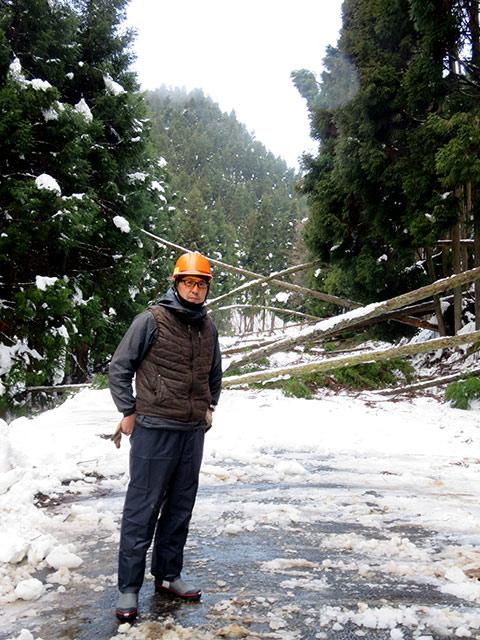 大雪で倒木