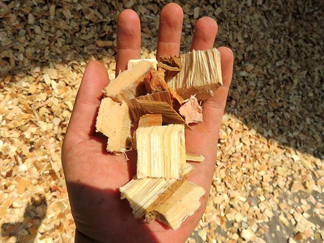 チップと呼ばれる紙の原料と、火力発電用燃料になるもの
