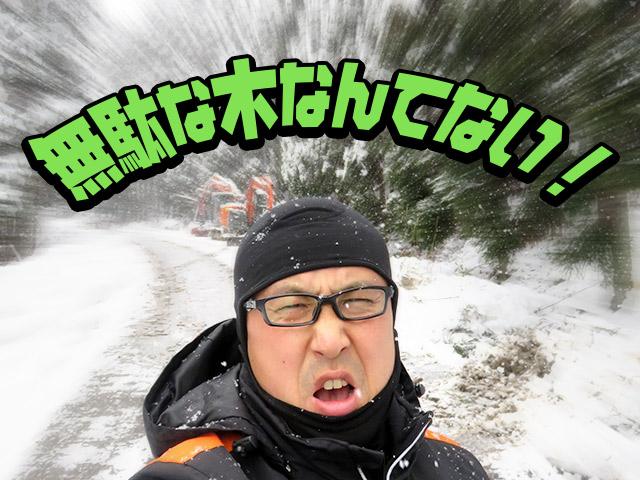 【京北のドカ雪の被害】木が倒れても、無駄にはしない!でも倒れる前に木材として利用できないか?