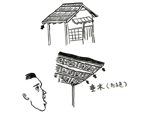 茶室などの数寄屋建築や高級和風住宅の屋根を支える垂木
