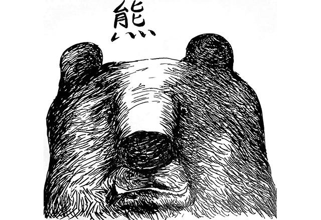 熊の被害に困っています