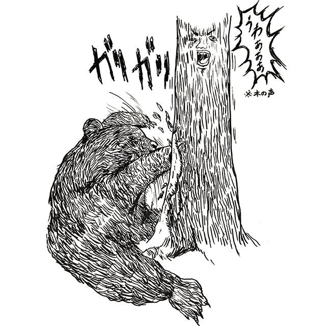 熊は木の皮を爪でむく