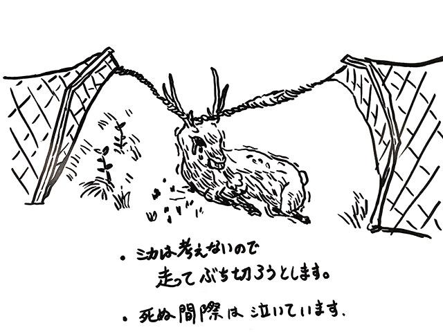 鹿は考えないので、走って防護ネットをぶち切ろうとします