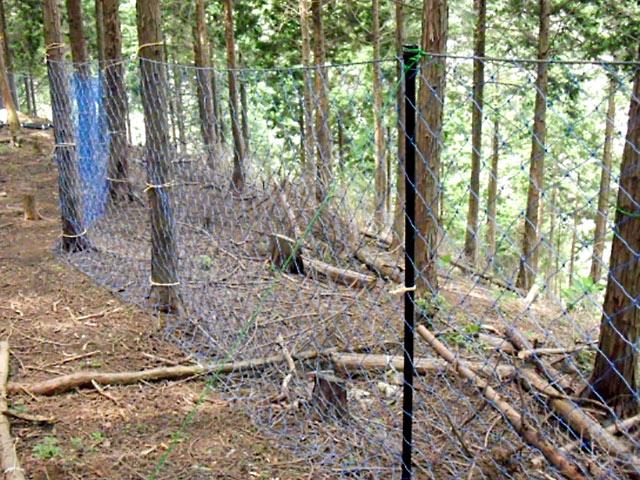 鹿対策の強力な防護ネット