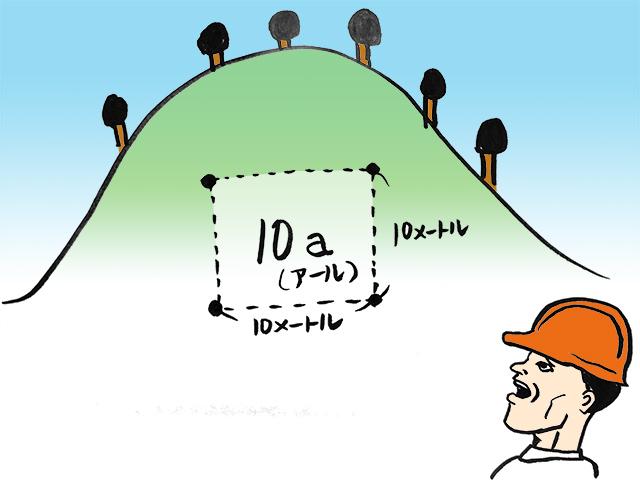10アールとは10メートル四方