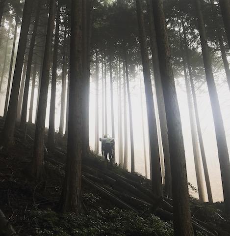 京北の山の中