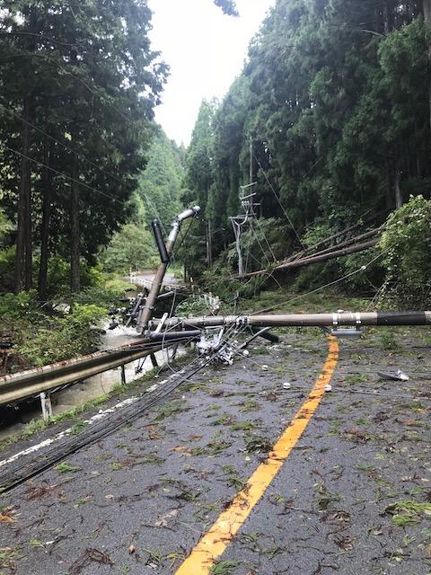 木が何本も倒れて電線に乗り、重みで電柱を折って倒しました