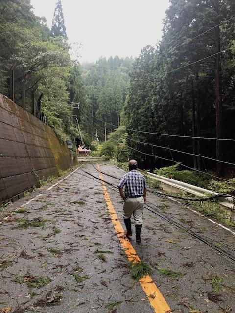 電線が道に横たわり、封鎖