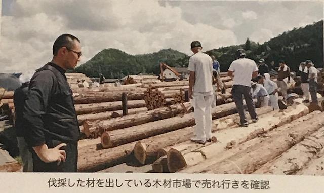 伐採した材をだしている市場