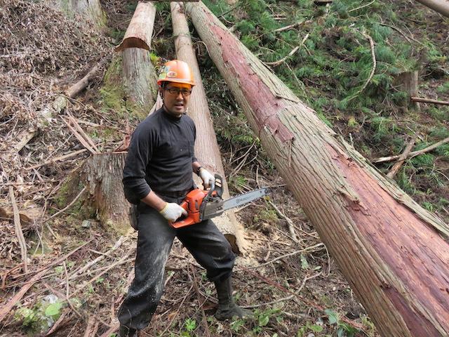 木を切る際は気はゆるめられません
