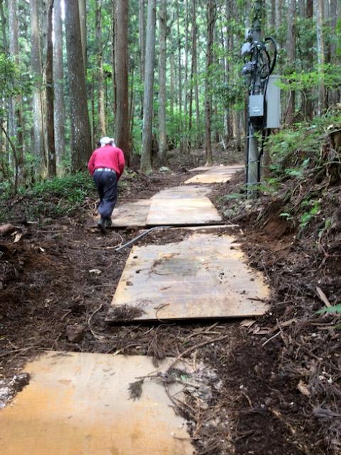 京都府京都市京北山国町稲荷谷の立木の間伐・搬出作業