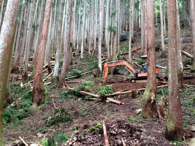 京都の山で間伐する前に新しく作業道を作っている様子です