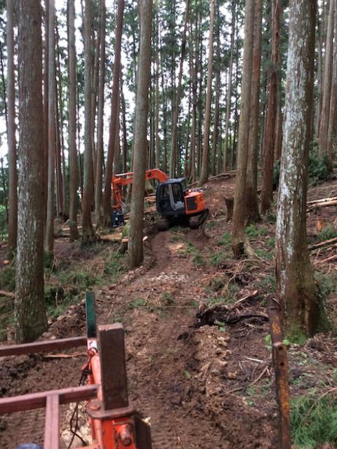 京都の山林で間伐材を搬出している様子です。