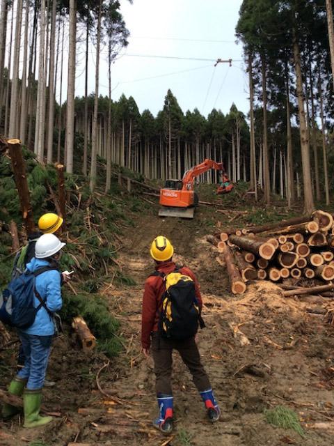 京都大の研究生さんと、タイで林業をされている研究者の方が、私たちの木材搬出の現場を訪問・見学