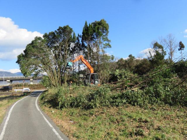 京都府亀岡市の林を更地にするため皆伐