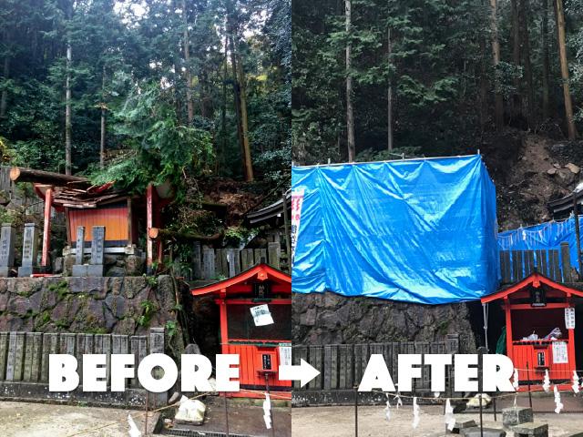 京都市左京区台風による危険木・障害木の被害対応
