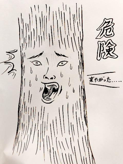樹木には自分で自分を守る能力がある
