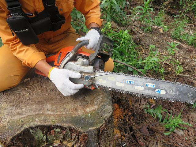 プラグレンチでナットをほどき木屑を掃除します。