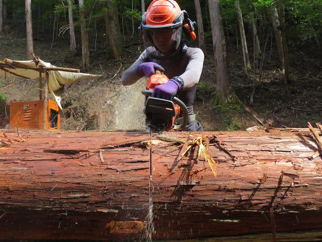 林業は国の政策による後押しもあり、研修制度が充実