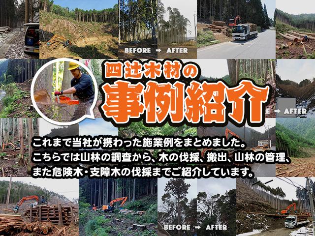 これまで当社が携わった施業の一例をご紹介いたします。こちらでは山林の調査から、木の伐採、搬出、山林の管理、また危険木・支障木の伐採まで紹介しています。