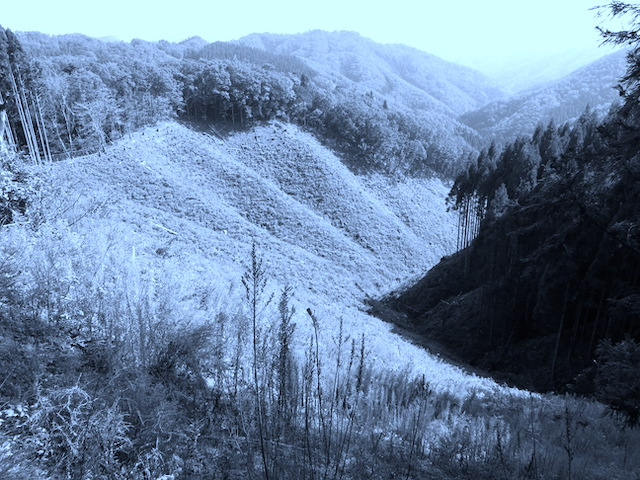 日本の山間部各地は、あっという間に、ハゲ山が広がった。</p>