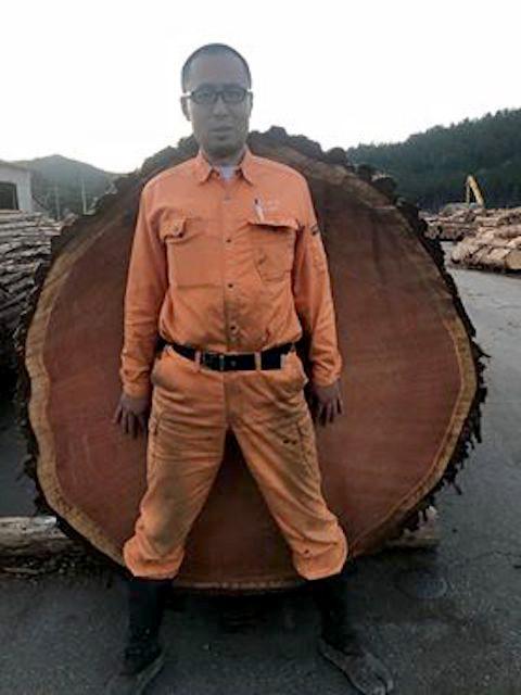現代では人間も木も太り過ぎは良くありません