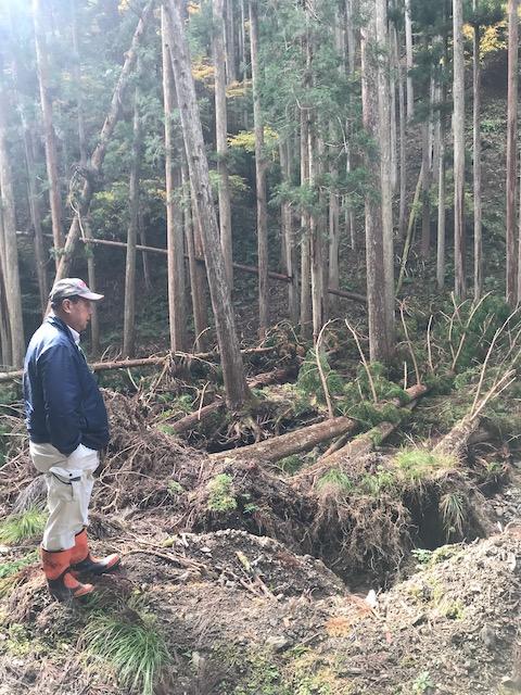 木が使われないと田舎の産業続かなくなってしまうかもしれない