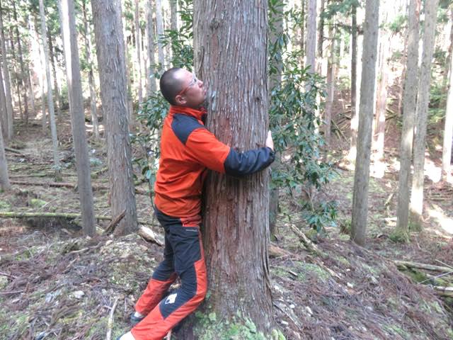 好みの街路樹に抱きつく