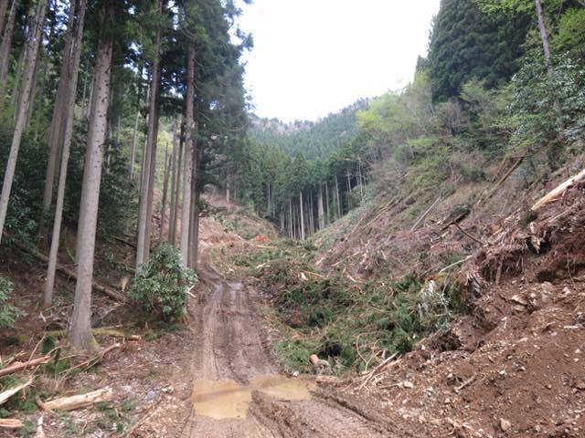 凹凸がきつい林道になってくると故障することあります。