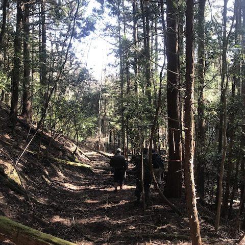 【京都市右京区京北矢代町】かつて先人たちが行き来した古道を使って木を搬出し、小花粉スギを植えました