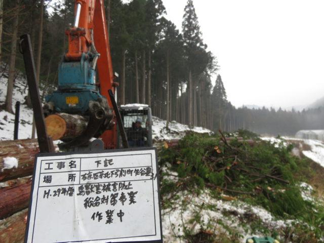 【京都市右京区京北塩田町】農作物を鹿から守る獣害対策・畑と山の間に鹿が警戒するゾーンを作りました