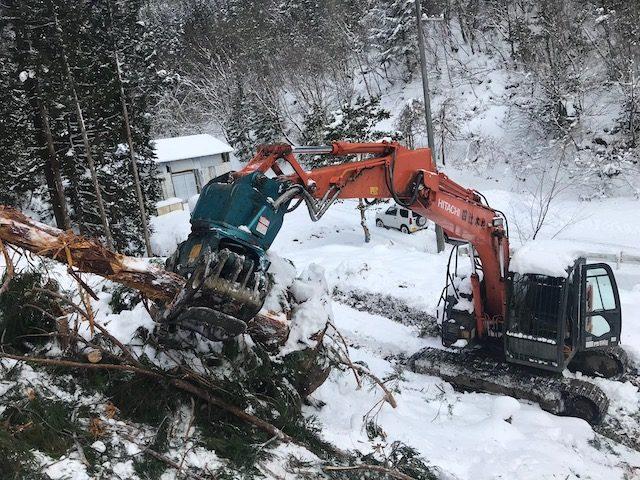 【京都市右京区京北上弓削町】大雪の中での伐採、搬出作業