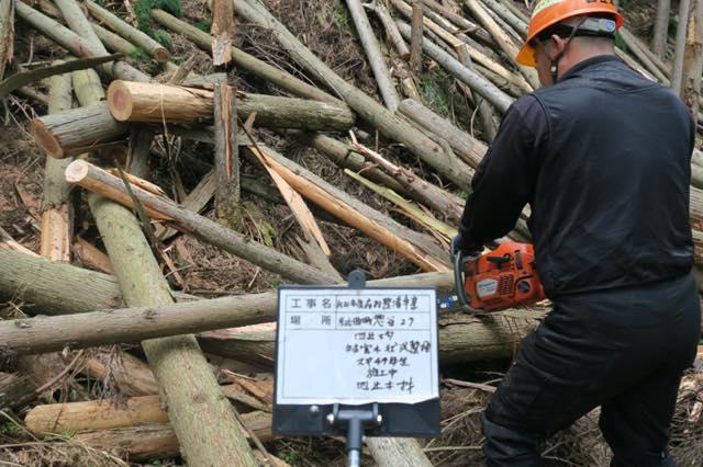 【京都市京北宇野町ソウ谷】自社所有林、重たいドカ雪で折れてしまった木を間伐しました