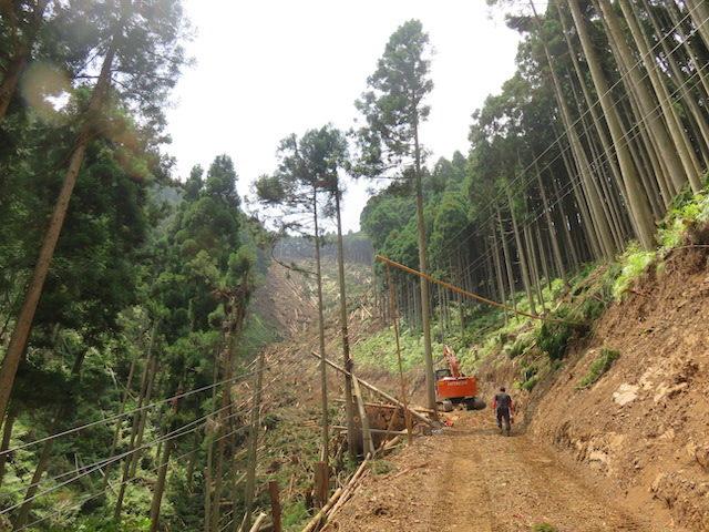 【京都市右京区京北宇野町宇野谷】急斜面の山頂部分の木を搬出し、再造林しました