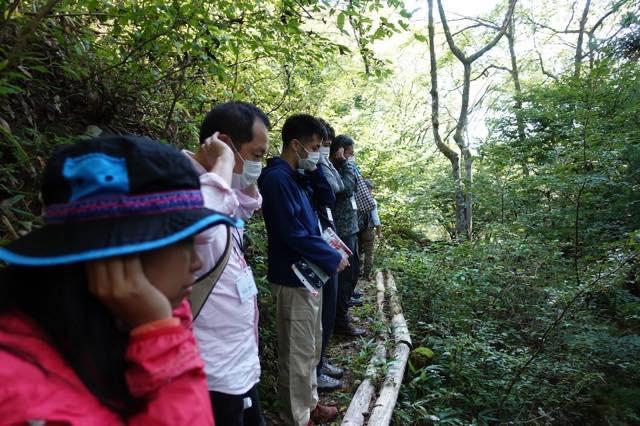 山、森、風、木、葉の音をききます。
