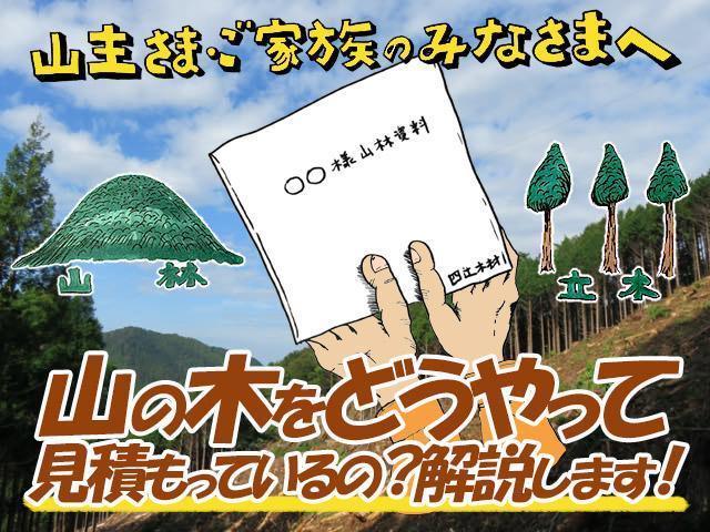 「山の木 買い取ります。」と聞くけれど、山の木をどうやって見積もっているの?